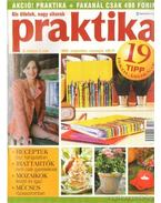Praktika 2005. szeptemper 9. szám - Boda Ildikó (főszerk.)