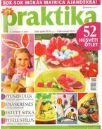 Praktika 2006. április 4. szám - Boda Ildikó (főszerk.)