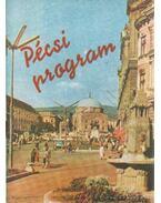 Pécsi program - Kolta János