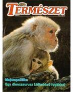 Természet 1996/10. - Kovács Zsolt (főszerk.)