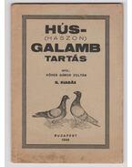 Hús-(haszon)galamb tartás - Köves Gábor Zoltán