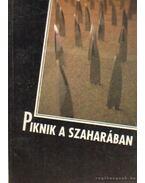 Piknik a Szaharában - Kulcsár Ferenc