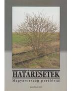 Határesetek - Kuthi Áron (szerk.), Nagy Vilmos