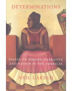 Determinations – Essays on Theory, Narrative and Nation in the Americas - LARSEN, NEIL
