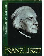 Franz Liszt - László Zsigmond, Mátéka Béla