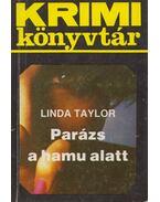 Parázs a hamu alatt - Linda Taylor