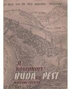 A középkori Buda és Pest - Lócsy Erzsébet, F. Mihály Ida, Holl Imre