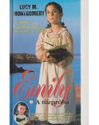 Emily - A tűzpróba - Lucy Maud Montgomery