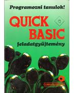 Quick Basic feladatgyűjtemény - Lukács Ottó