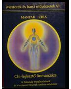 Chi-fejlesztő önmasszázs - Mantak Chia