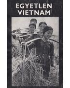 Egyetlen Vietnam - Máté György
