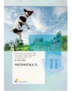Matematika 11. - Vancsó Ödön