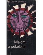 Malom a pokolban - Moldova György