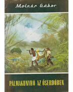 Pálmakunyhó az őserdőben - Molnár Gábor