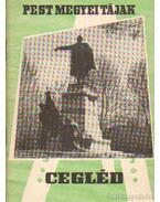 Cegléd - Nagy Dezső