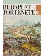 Budapest története III. - Nagy Lajos, Bónis György, Kosáry Domonkos (szerk.)