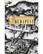 Budapest - Ces villes qui ont fait l'Europe (dedikált) - Nagy László