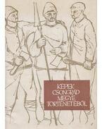 Képek Csongrád megye történetéből - Németh István, Várhelyi Flórián