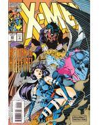 X-Men Vol. 1. No. 29 - Nicieza, Fabian, Kubert, Andy, Matt Ryan