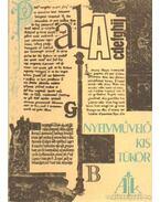 Nyelvművelő kis tükör - P. Kovács Imre