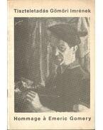 Tiszteletadás Gömöri Imrének (1902-1969) - Pálosi Judit