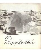 Papp Zoltán festőművész kiállítása (meghívó)
