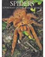 Spiders: A Portrait of the Animal World - Paul Sterry