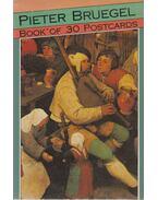 Pieter Bruegel - Book of 30 Postcards