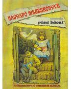 Nagyapó meséskönyve - jutalomkönyv jó gyermekek számára - Pósa Lajos