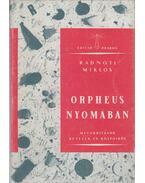 Orpheus nyomában - Radnóti Miklós