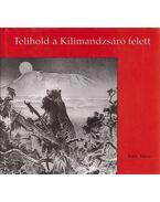 Telihold a Kilimandzsáró felett - Rakk Tamás