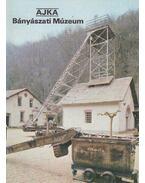 Ajka - Bányászati Múzeum - Rappai Zsuzsa