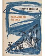 Pernambucói éjszaka - Nem is olyan rettenetes - Agrella emléke - Remenyik Zsigmond
