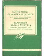Systematická gramatika slovenská / Rendszeres szlovák nyelvtan - Jozef Ruzicka, Jozef Stolc, Eugen Paulíny