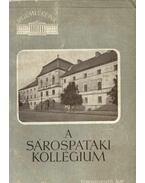A sárospataki kollégium - Román János