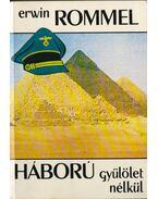 Háború gyűlölet nélkül - Rommel, Erwin