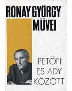 Petőfi és Ady között - Rónay György