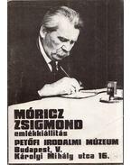 Móricz Zsigmond emlékkiállítás - Sára Péter