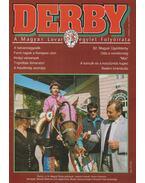 Derby 1996. október - Schöffer Jenő