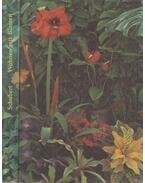 Wohnen mit Blumen - SCHUBERT, MARGOT