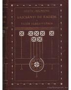 Bajcsányi De Eadem és egyéb elbeszélések - Sebők Zsigmond