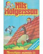 Nils Holgersson 8. - Selma Lagerlöf
