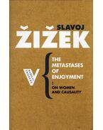 The Metastases of Enjoyment: Six Essays on Women and Causality - Slavoj Zizek