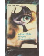 Adrian Mole minden kínszenvedései - Sue Townsend