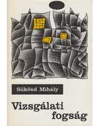 Vizsgálati fogság - Sükösd Mihály