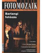 Foto mozaik 71. 2004. március VII. évfolyam 3. szám - Sulyok László