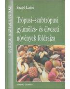 Trópusi-szubtrópusi gyümölcs- és élvezeti növények földrajza - Szabó Lajos