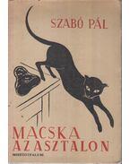 Macska az asztalon - Szabó Pál