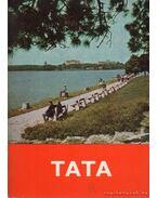 Tata - Székely Géza