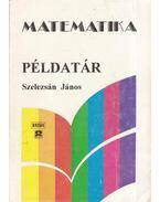 Matematika példatár - Szelezsán János